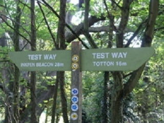 Walk the Test Way