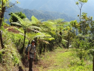 Bruce & Tom Woollard - Costa Rica Trek